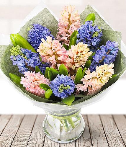 10 Hyacinths