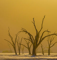 Afrika-Namibia-World-Geographic-Excursio