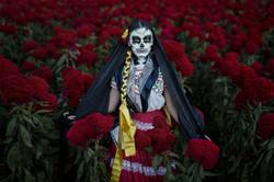 Catrina im Blumenfeld 2 - Mexiko