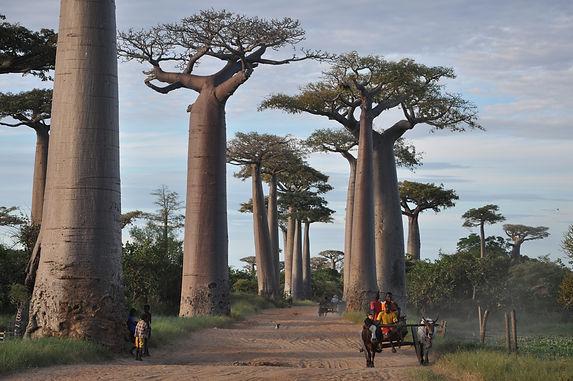 Fotoreisen-World-Geographic-Excursions-M