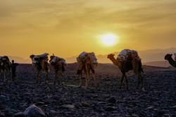 fotoreisen-world-geographic-excursions-aethiopien-djibouti-20
