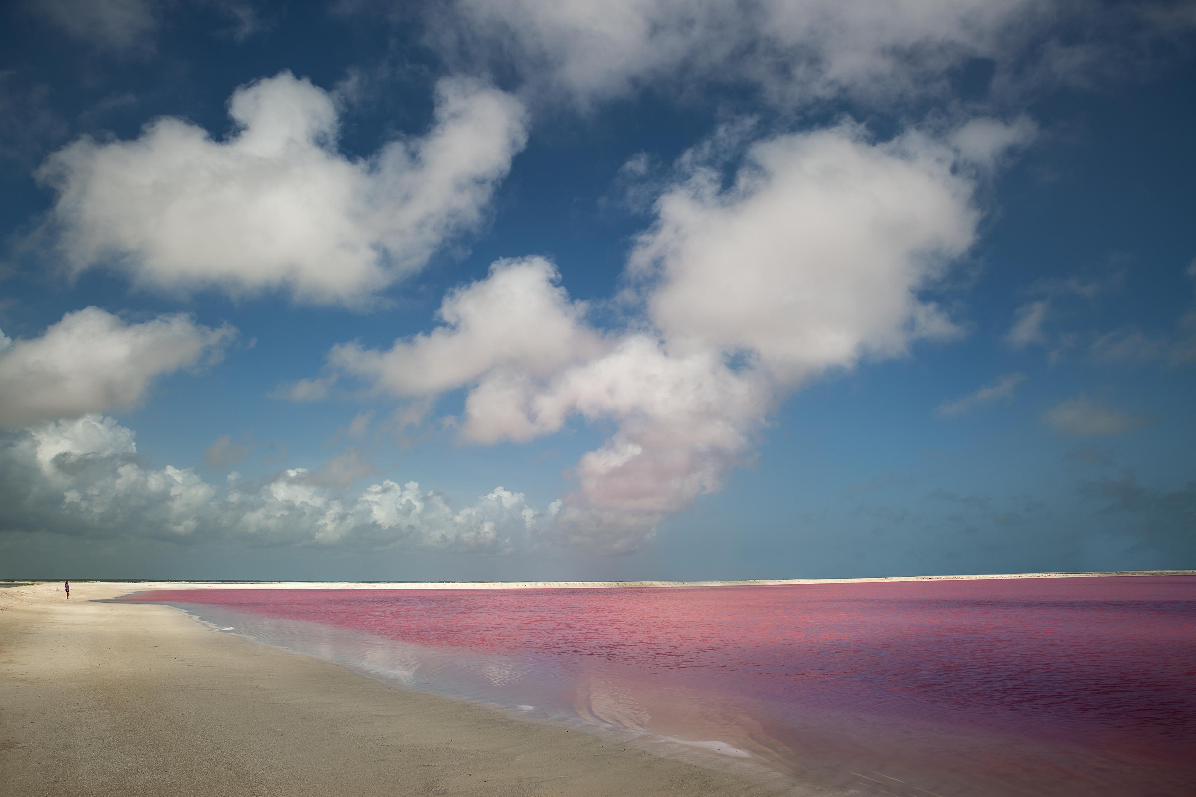 las-coloradas-pink-lakes-yucatan-mexico-