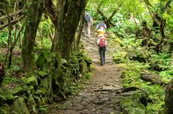 world-geographic-excursions-azoren-furna
