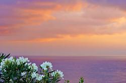 world-geographic-excursions-azoren-terce