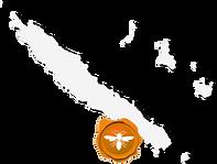 ニューカレドニアの蜂蜜PAITA1.png
