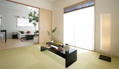 Tatami9.jpg