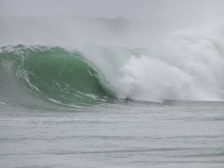 Aggie surf