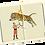 Thumbnail: Postkartenbox
