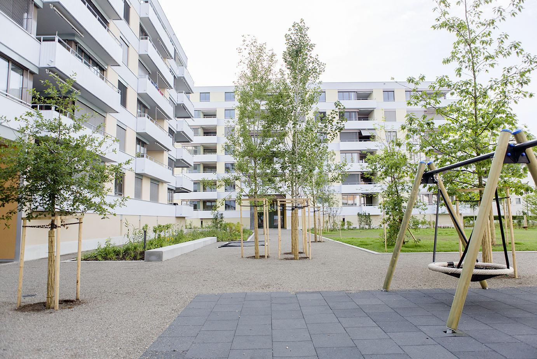 180704_Richard-Gartenbau_Wallisellen_Glattgarten_0016