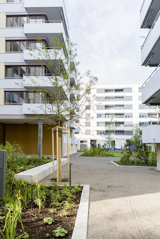 180704_Richard-Gartenbau_Wallisellen_Glattgarten_0001