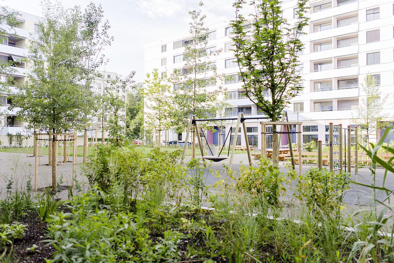 180704_Richard-Gartenbau_Wallisellen_Glattgarten_0018