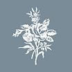 Mai Zahrat Copywriting logo: white line drawing of rose bouquet on gray background