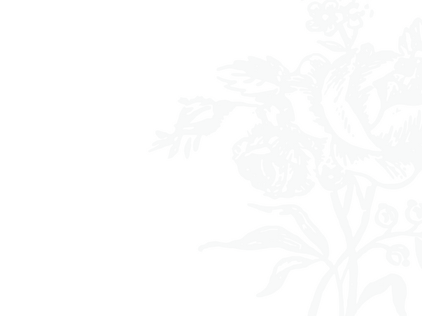 Background image: line drawing of pale gray rose bouquet against white, positioned on right