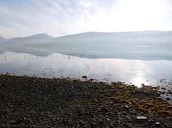 Loch fynn