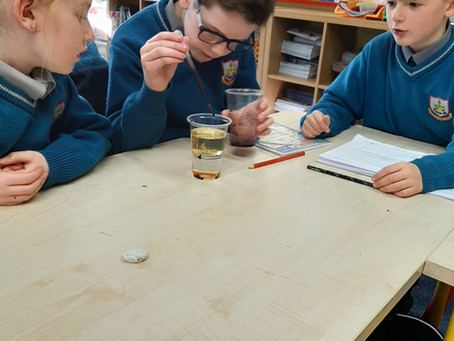 Rang A Dó - Science Week Investigations and Amazing Creations!