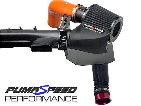 Pumaspeed Racing Gemini Twin Induction Kit