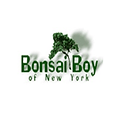 Bonsai Boy of New York, bonsai trees and supplies delivered to your door