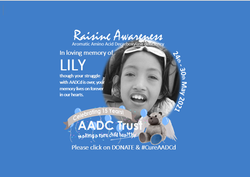Lily 2021