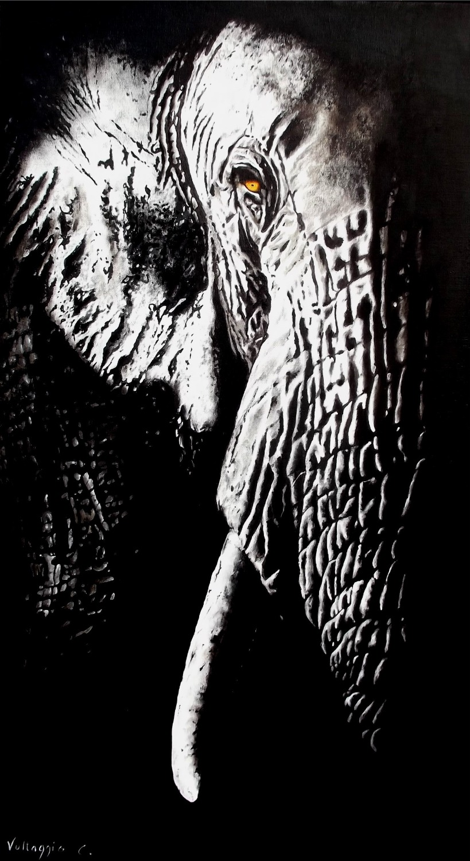 Black ivoire