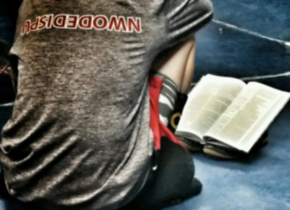 Case of Bibles (25 bibles/case)