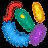 microbe_1f9a0 (1).png