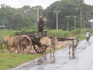 Myanmar Run
