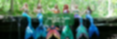 Mermaid Banner Ad.png