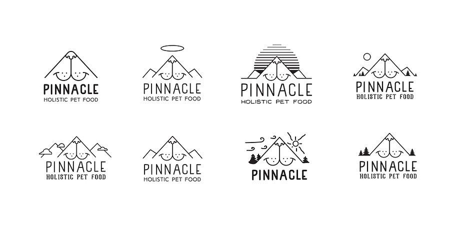 Pinnacle_Logos-100.jpg