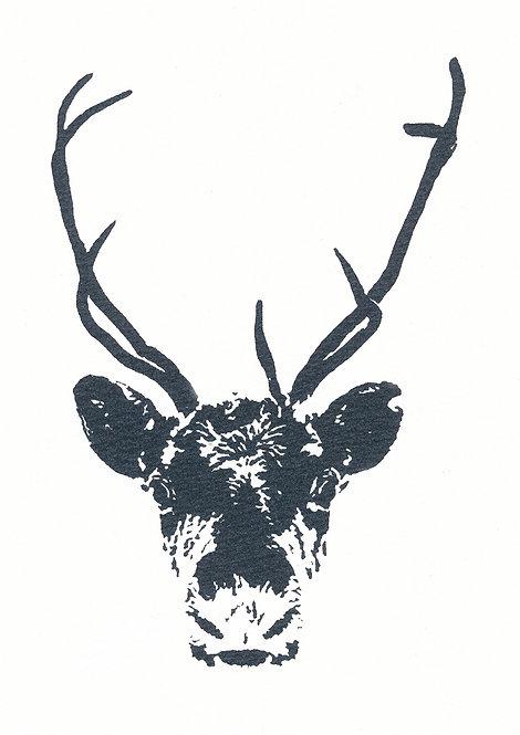 Henri Hiltunen / Reindeer 1