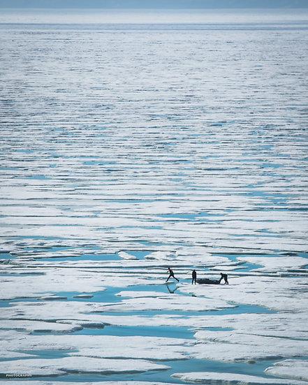 Print 1-018 - Jumping Icebergs