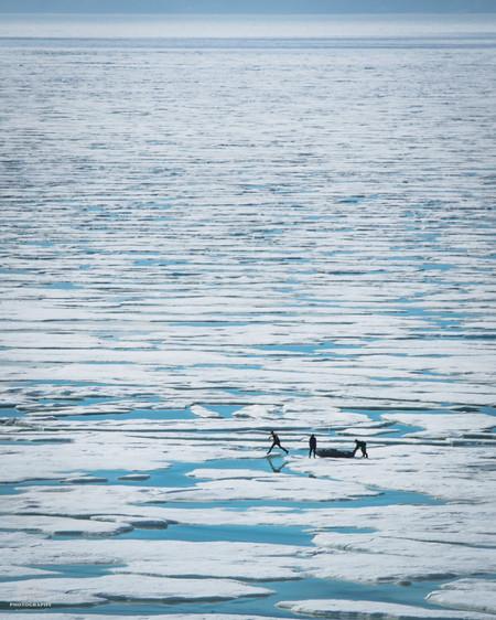 Jumping Icebergs