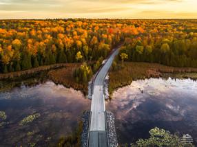 Roadway Through Autumn