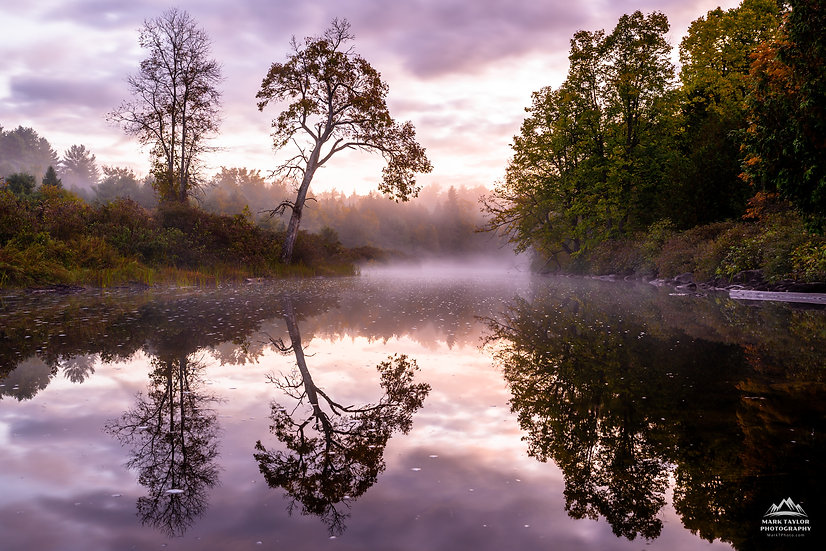 Print 1-022 - Foggy Reflections
