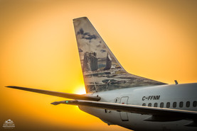 The Flying Arctic Scene