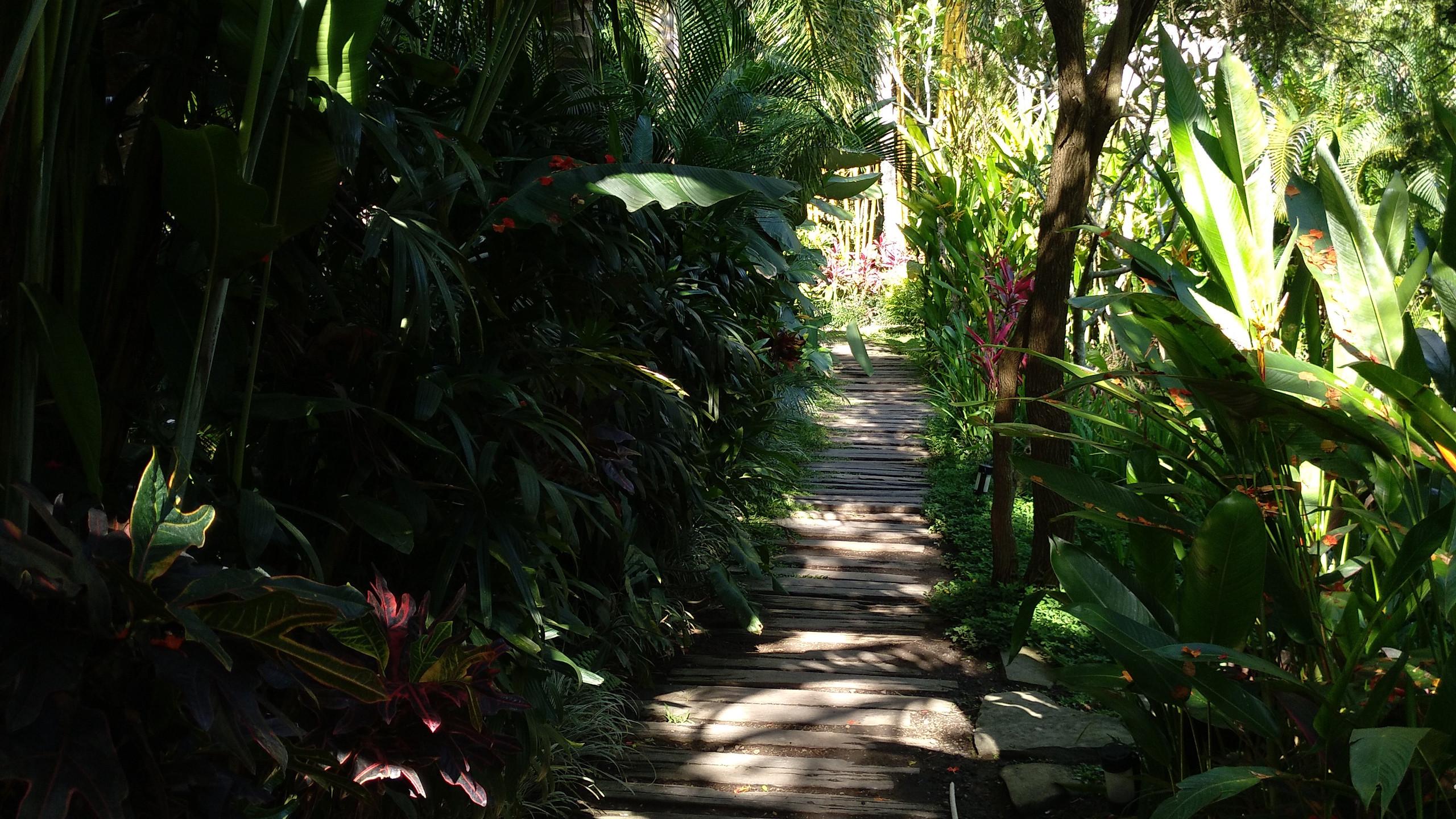 Nice walkways