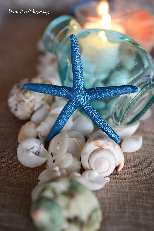 Adrift: Sea Shells, Sea Stars, Aqua Tones