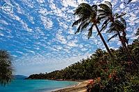 Palm-Bay-Resort.jpg