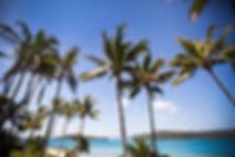 Daydream-Island-Wedding-7.jpg