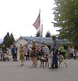 Porch Parade