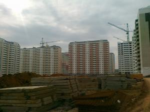 20111.jpg