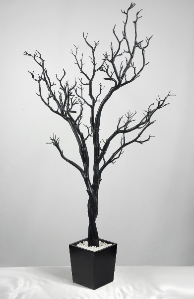 Black Manzanita Branches