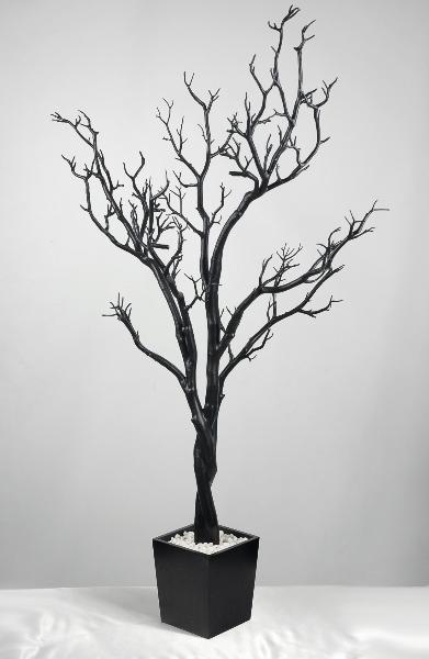 Black Manzanita Branches
