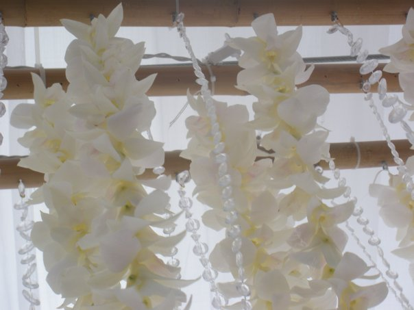 Orchid crystal chandelier
