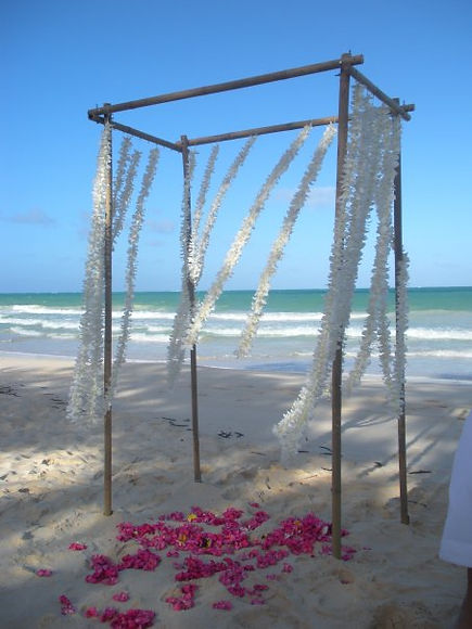 Beach Wedding Rentals for Tampa