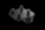 314455-ZHD%20-%20Quad_edited.png