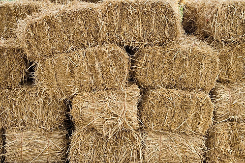 Become A Hay Sponsor