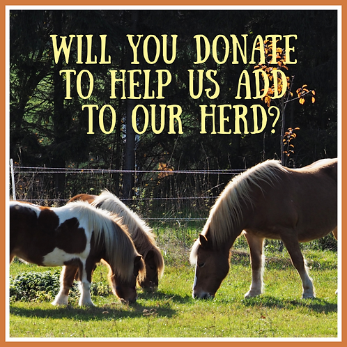 Donation for New Horses