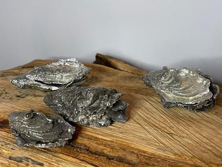 Oyster Shells.