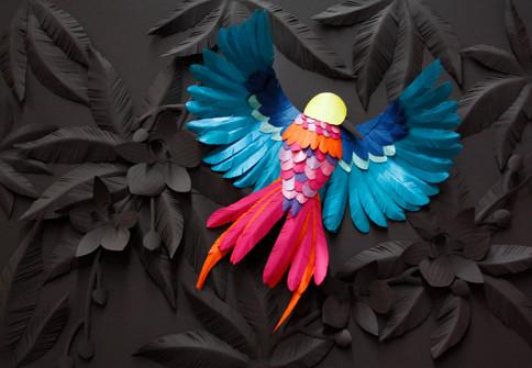 """""""Oiseau de Paradis"""""""