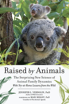 Raised by Animals VCover_Final.jpg